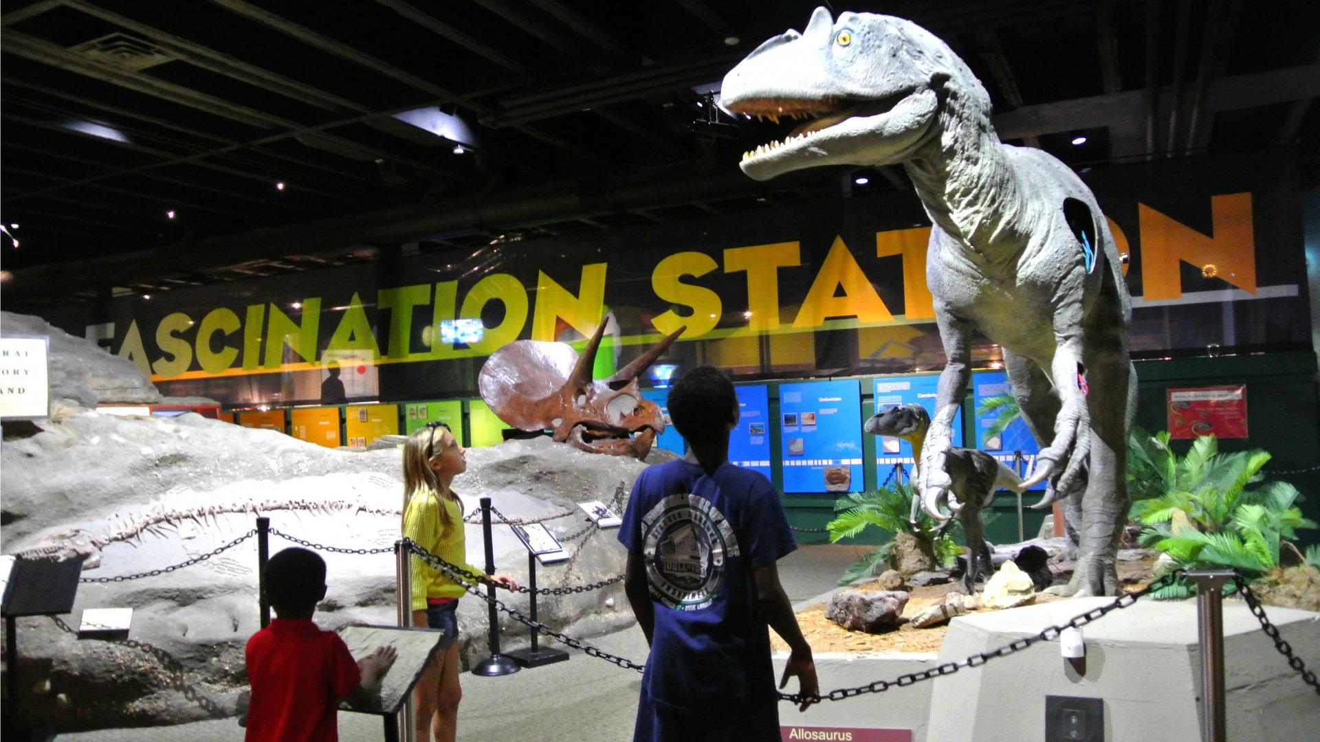What To Do In Canton Ohio Attractions Museums Parks: dinosaur museum ohio