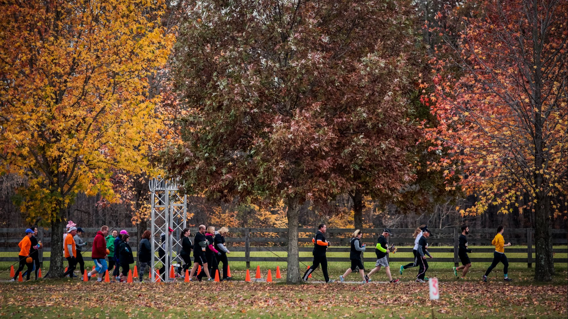 Fall 5K Races