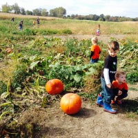 Boo-tastic Fun for the Whole Family this Fall in Stark County