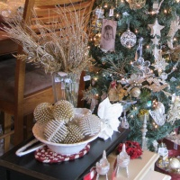 Shop Local: Black Friday and Shop Small Saturday Specials Throughout Stark County