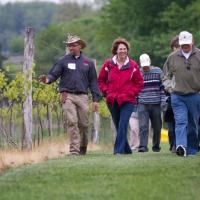 Something to Wine About in Stark County