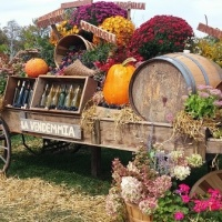 5 Things To Do This Weekend September 22-24